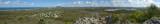 # Emu Mountain #