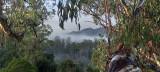 more Australian landscapes
