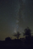 Milky Way from Davis Mtn State Park