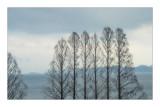 琵琶湖 志賀付近
