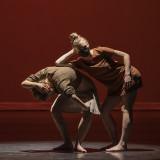 Dance Canvas 2020-2021