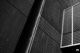 Corrugated Rift