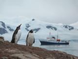 2006 Zuidpool Antarctica
