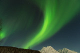 D4S_2062F noorderlicht (aurora borealis, northern light).jpg