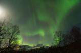 D4S_2060F noorderlicht (aurora borealis, northern light).jpg