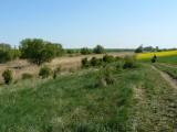 In Sály buurt van Farm Lato