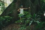 Wortels van de kapokboom , Ceiba pentandra