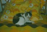 Daisy 1975