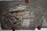 Istanbul Mosaic museum Marten with prey june 2019 2476.jpg