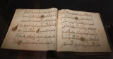 Istanbul Turkish and Islamic arts museum Umayyad quran page 12-13th century june 2019 2230.jpg