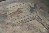 Urfa Haleplibahce Museum Achilles mosaic sept 2019 5102.jpg
