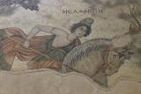 Urfa Haleplibahce Museum Hunting Amazons mosaic sept 2019 5180.jpg