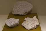 Urfa museum Stone plates sept 2019 4911.jpg