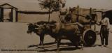 Urfa City museum sept 2019 5436.jpg