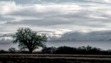 Winter Sky, New Mexico