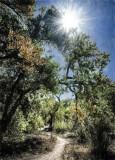 Bosque River Trail