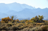The Bosque and Sandia Foothills