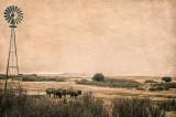 Cimarron Prairie