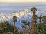 Snow Covered Mt San Jacinto