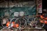 Bicycle Still Life