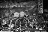 Bicycles Three