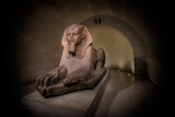 The Louvre's Egyptian Sphinx