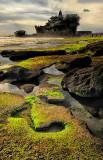 Mossy Tide Pools at Tanah Lot