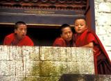 Sudent Monks