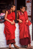 Young Monks at Wangdi Dzong