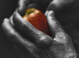 Apple in Monk's Hands