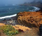North of Morro Bay