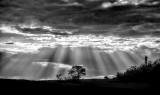 God Rays over the Mara Plains