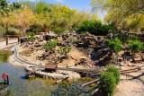 Living Desert Zoo & Gardens, Palm Desert, California