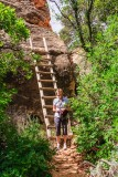 The trail goes up the ladder