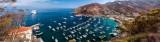 Avalon Harbour