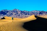 Mesquite Flat Sand Dunes, 14 square miles of dunes.