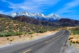 Driving to Charcoal Kilns - Wildrose Peak