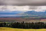 From slope of lower Haleakala