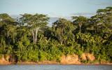 Peruvian Amazon Travelogue