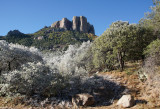 Frosty Chisos Mountains