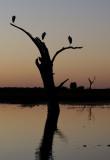 LAKE TEXANA & NAVIDAD RIVER