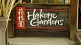 Hakone Gardens, Saratoga, CA - 04/07/19
