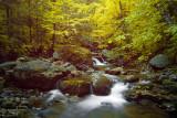 Miles Brook Cascades
