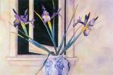 Starlit Irises