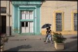 Abrella for sun protection - Camagüey