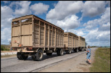 Truck-train with sugarcane - Granma