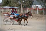 Horse taxi - Las Tunas