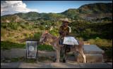Man with donkey - El Cobre