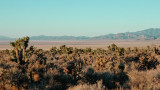 Dry Lake Valley