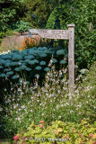 The way to the garden